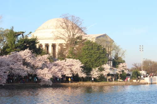 Jefferson Memorial and the Tidal Basin