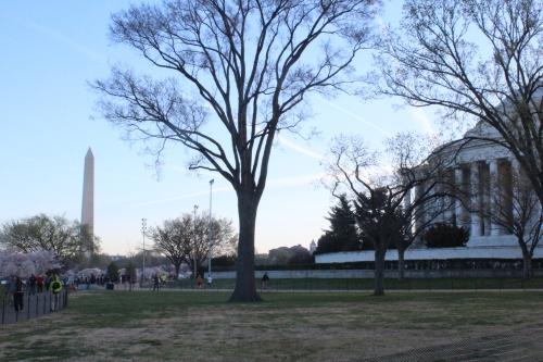 Jefferson and Washington